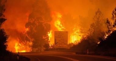 Tragedie în Portugalia / 57 de persoane au murit într-un incendiu de pădure din centrul ţării. Numărul victimelor este în creştere
