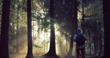 ALERTĂ! O femeie şi copilul ei de 3 ani, dispăruţi după o plimbare în pădure
