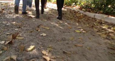 CAZ TERIBIL! Elevă bătută cu scândura de către o colega de clasă