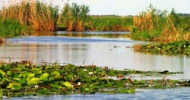 Americanii sunt fascinaţi de Delta Dunării