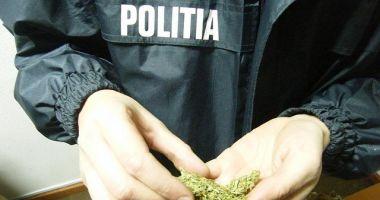 TRAFIC DE DROGURI ÎN SUDUL LITORALULUI! Acţiune în forţă a poliţiştilor