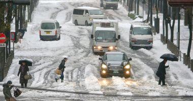 Furtună de zăpadă! Traficul aerian şi terestru, puternic perturbat