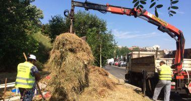 Administrația locală continuă lucrările de igienizare în cartierele din Constanța