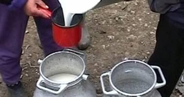 Agenţii economici din industria laptelui trebuie să depună declaraţiile anuale