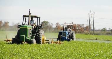 Agricultorii vor primi mai mulţi bani pentru motorină