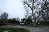 Parcurile Constanţei, dezastrul de după iarnă