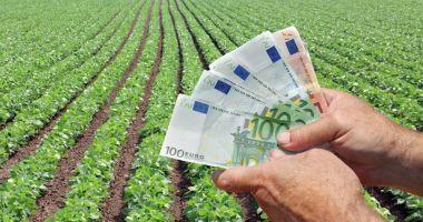 Bani pentru fermierii din sectorul vegetal