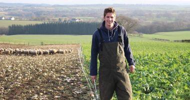 Bani de la stat pentru tinerii fermieri