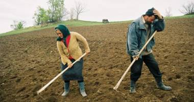Birocraţia pentru micii fermieri se reduce