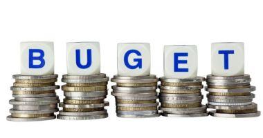 Guvernul a APROBAT bugetul pe 2019