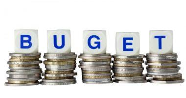 Bugetul de stat va fi aprobat până sâmbătă, de către Guvern