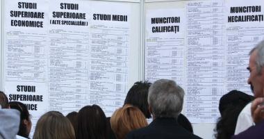 ANOFM. Iată câte locuri de muncă sunt disponibile la nivel naţional