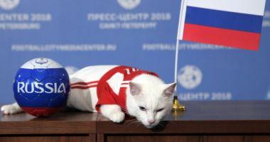 VIDEO. Cupa Mondială de fotbal 2018: Motanul Ahile prezice victoria din meciul de deschidere
