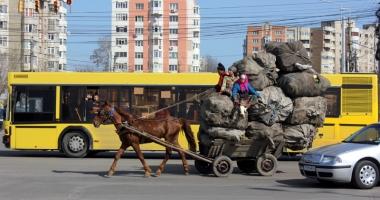 Ai văzut căruţe pe străzile Constanţei? Sună la Poliţia Locală!