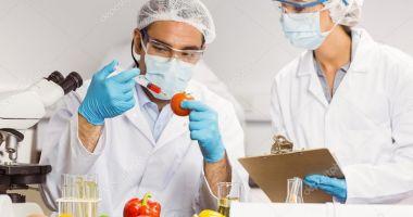 Cât de departe este România de modelul european  de siguranță alimentară?