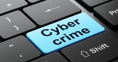Coaliție europeană împotriva criminalității informatice