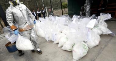 Captură de proporţii în Columbia.  Peste şapte tone de cocaină,  confiscate de autorităţi