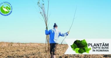 Colaborare pentru natură: Coaliția Natura 2000 și Plantăm fapte bune în România au devenit parteneri