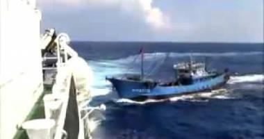 Coliziune între un cargou şi un vas pescăresc