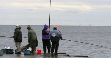 Concursuri de pescuit şi degustări  de peşte, în iunie şi septembrie, la Eforie