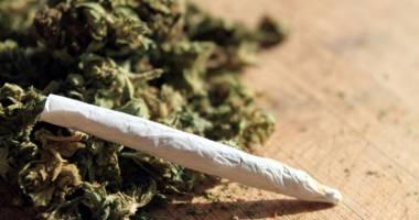 Constănţean arestat pentru trafic de cannabis