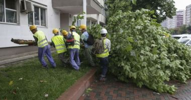Străzi inundate și copaci doborâți, după furtuna care a lovit Bucureștiul