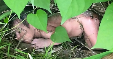 CAZ ŞOCANT! Fetiţă abandonată într-un tufiş cu spini, pentru că nu s-a născut băiat