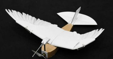Drona-porumbel cu pene reale, noua invenție a cercetătorilor din California