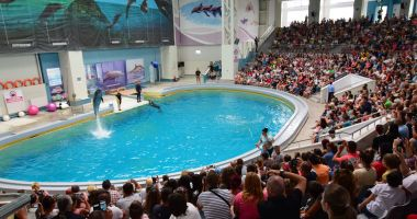 Delfinariul Constanța va fi extins și vom avea un nou acvariu