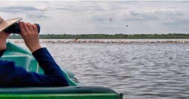 Turismul de observare a păsărilor în Delta Dunării, creştere spectaculoasă în ultimii ani