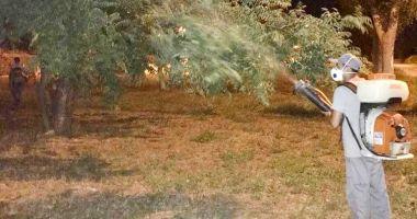 A început dezinsecția în municipiul Constanța