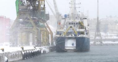 Docherii au deszăpezit portul Constanţa