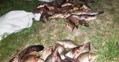 Dosare penale după ce au fost prinși cu peştele furat de la o fermă