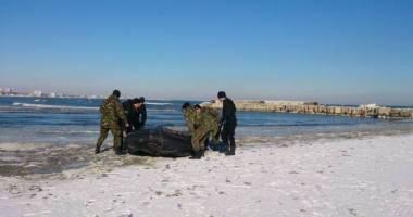 Ce spun reprezentanţii Academiei Navale despre studentul care s-a sinucis