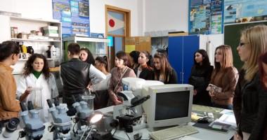"""Elevii  Liceului """"Cotovu""""  din Hârşova îşi aleg responsabil cariera"""