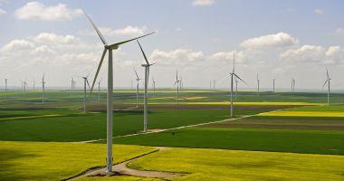 Olandezii construiesc în România al cincilea parc eolian din lume