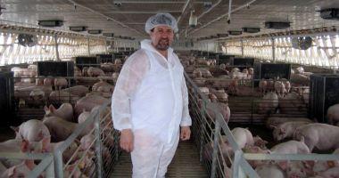 Joburi în străinătate. Se caută muncitori în fermele de porci