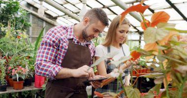 Joburi în străinătate. Se caută meseriași și muncitori în grădinărit