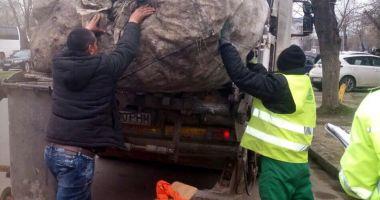 Cunoaşteţi persoane care colectează peturi ori deşeuri reciclabile? Alertaţi autorităţile!