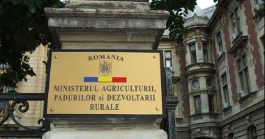 Experţii spanioli le-au dat lecţii specialiştilor din Ministerul Agriculturii