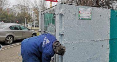 Măsuri pentru încurajarea colectării selective a deșeurilor, la Constanța