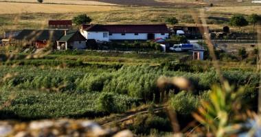 Se pot solicita fonduri nerambursabile pentru instalarea tinerilor fermieri
