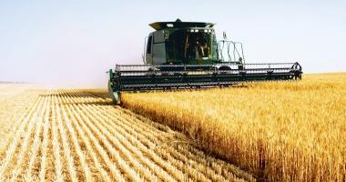 Fermierii constănţeni plătesc tribut secetei