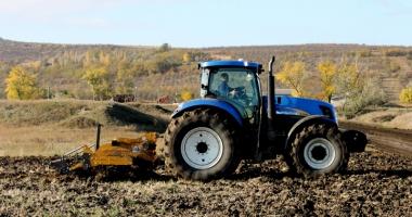 Fermierii dobrogeni seamănă grânele în praf şi-n pulbere