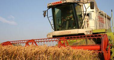 Fermierii plâng cu vorbe! Recoltele s-au înjumătățit, prețurile sunt mici, creditorii bat la ușă