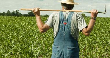 Fermierii sunt disperați! Despăgubirile și ajutoarele promise de guvernanți întârzie prea mult
