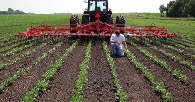 Fermierii sunt încurajați să își asigure culturile