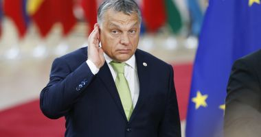 Filme patriotice  în grădiniţele  din Ungaria,  noul proiect  al lui Viktor Orban