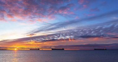 SLN solicită vânzarea grabnică a navelor statului către partenerii de contract