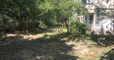 Grădinile din jurul blocurilor, lăsate în paragină de locatari